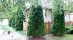 Eladó családi ház Szentén. 7.5 M Ft. - 31809