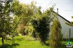 Eladó nagy telek kis tégla házzal Nagyorosziban. 2.5 M Ft - 35486