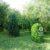 3 az egyben telek és faházas nyaraló Pusztaberkiben..4.3 M ft - 37869 - Kép5