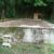 Eladó belterületi építési telek Diósjenő panorámás részén. 3.5 M Ft - 37843 - Kép4