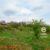 Eladó építési telek Szendehely-Szarvasréten. 7.3 M Ft - 38761 - Kép1