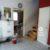 Eladó kétszintes családi ház Göd – Új telepen. 18.99 M Ft - 39185 - Kép3